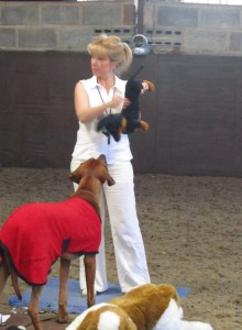Back Blows for small breed dog on canine first aid training course