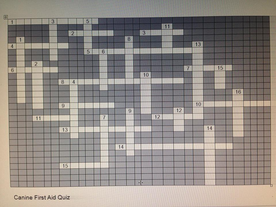 Canine First Aid Crossword