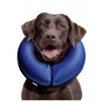 buster blow up collar