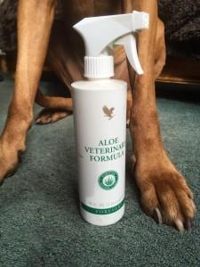 Aloe Vera Veterinary Formula